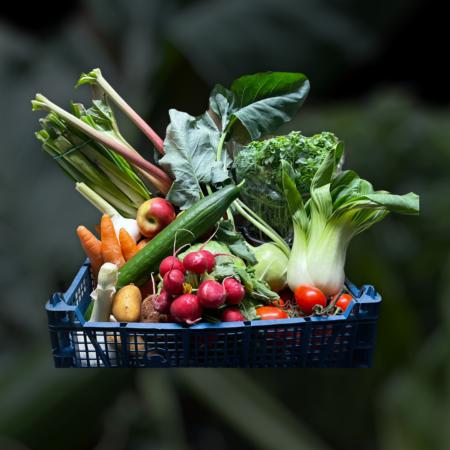 Frischer Spargel & leckeres Gemüse